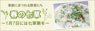 1/7 七草粥の日.png