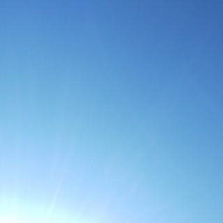 12/28 暖かい日差し.jpg
