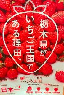 2/26 いちご王国.jpg