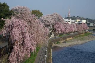 3/20 田川.jpg