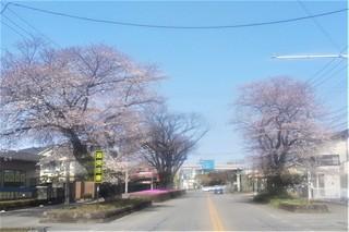 3/27 日光街道.jpg