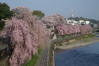 3/29 田川.jpg