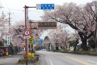 3/31 日光街道.jpg