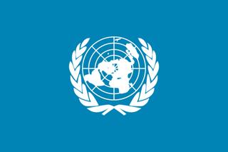 5/29 国連.png