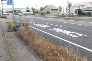 0727 花�A).JPG