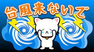 1010 台風.png
