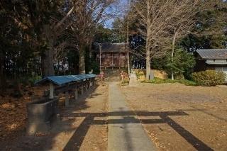 3/17 長良神社 .jpg
