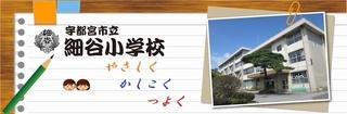 3/6 細谷小.jpg