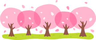 3/8 桜並木.png
