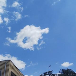 5/17 コミセンの空.jpg