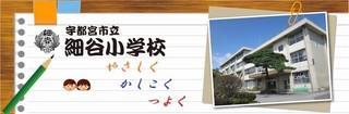 5/31 細谷小学校.jpg