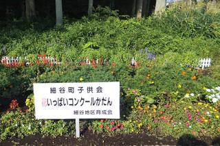 8/27 花壇 細谷町.jpg