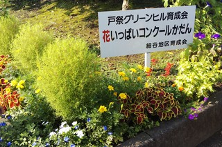 8/27 花壇第1GH.jpg