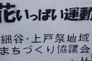 9/7 花いっぱい運動.jpg
