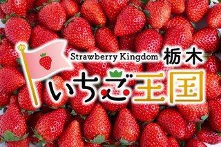 1/15 イチゴの日.jpg