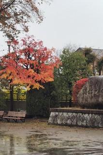 11/23 秋祭り�@.jpg