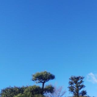 2/18 青空.jpg