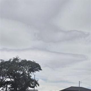 8/22 コミセンの外は.jpg